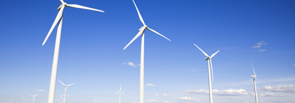 Renewable Energy and Sustainability Consulting